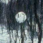 andy_goldsworthy_06