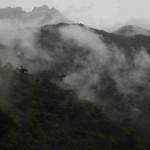 CloudForestWeb